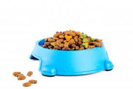 Сухий корм для котів
