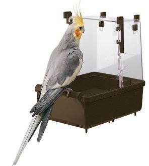 Купалки для папуг
