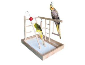 Іграшки для птахів